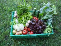 Gemüsekorb Abo